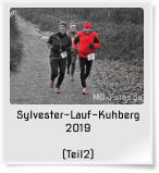 Sylvester-Lauf-Kuhberg 2019  (Teil2)