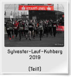 Sylvester-Lauf-Kuhberg 2019  (Teil1)
