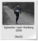 Sylvester-Lauf-Kuhberg 2019  (Teil3)