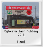 Sylvester-Lauf-Kuhberg 2018   (Teil1)