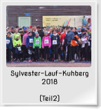 Sylvester-Lauf-Kuhberg 2018  (Teil2)